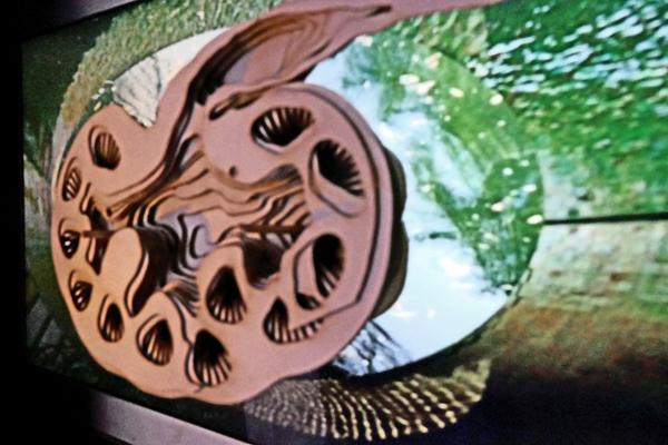 Niere Objekt, Karton Schichten, vor Projektionsspiegelung